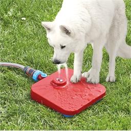 Fontaine de jardin pour chiens