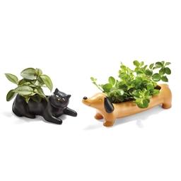 Pot à plante Chat, Teckel ou Pigeon