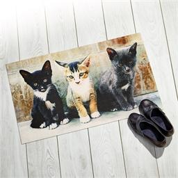 Tapis chatons