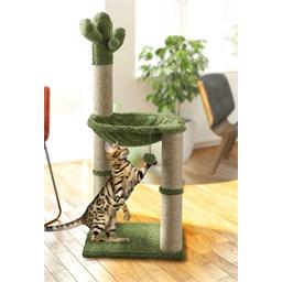 Arbre à chat cactus avec hamac