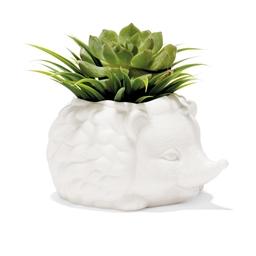 Pot à plante hérisson