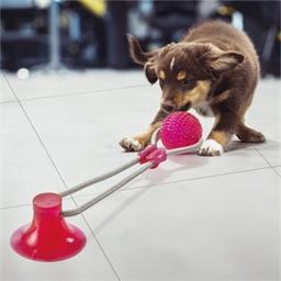 Jouet corde avec ventouse pour chien